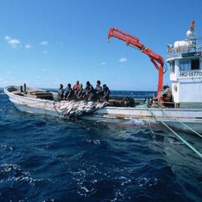 海南渔业用绳
